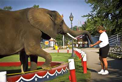 Circus World Museum: Photo Credit Don Davenport