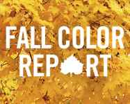 Fall 2015: Fall Color Report