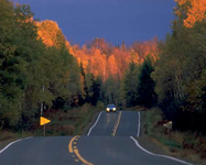 Fall Road Trips: Northern Wisconsin