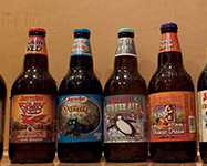 Must Try Craft Soda