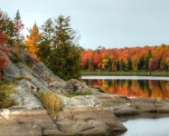 When to Expect Fall Color in WI