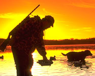 DNR Get Hunting Licenses