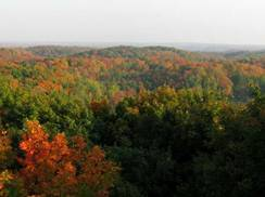 Image for 5 Wisconsin Cabins for Hilltop Fall Color Tour Hikers