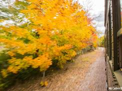 Image for Staff Picks: Our Favorite Wisconsin Spots for Fall Color