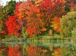 Image for Stunning Fall Scenery: Northern Wisconsin