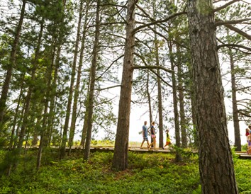Pick Your Park: 7 Hidden Gems in Wisconsin State Parks
