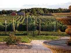 Image for Experience the Fox River Valley Wine Trail