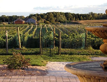 Experience the Fox River Valley Wine Trail