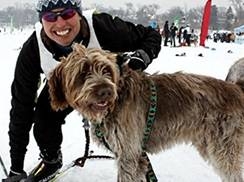 Image for Where to Enjoy Skijoring in Wisconsin