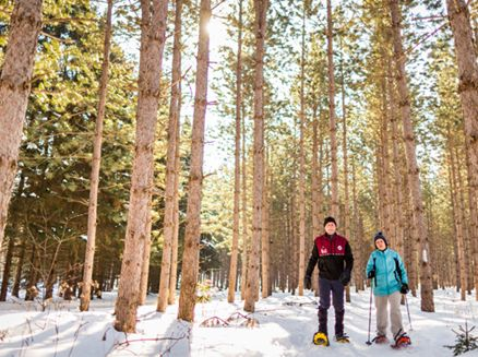 Image for 7 Places You Can't Miss This Winter in Wisconsin