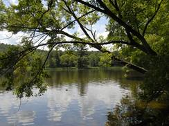 Image for National Treasures: St. Croix National Scenic Waterway