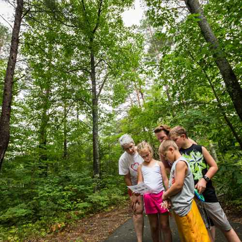 48 Hours in Wisconsin's Northwoods: Eagle River and Minocqua