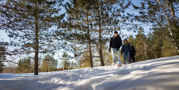 11 Ice Age Trail Hikes to Explore This Winter
