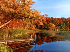 Image for Three Ways to See Fall Color: Below, in and Above Wisconsin's Trees