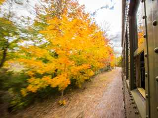 New Angle on Autumn: 6 Ways to See Wisconsin's Fall Color