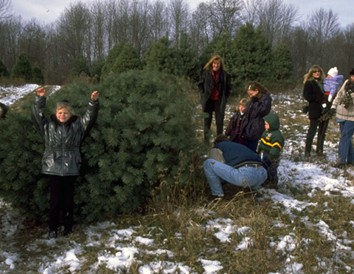 More Than a Christmas Tree: 9 Wisconsin Farms