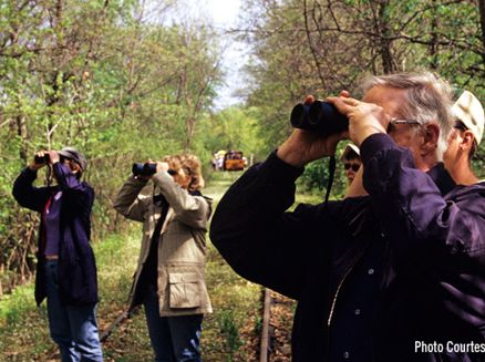 Image for Fall Bird Watching