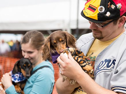 Image for Dog-Friendly Events Put the Woof in Wisconsin