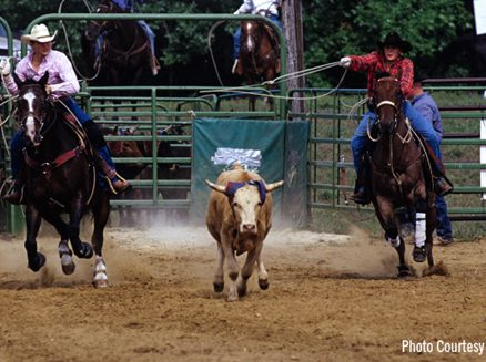 Image for The Wild Wild (Mid)west: Wisconsin Rodeos