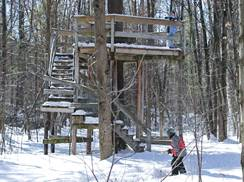 Image for Winter Activities at Wisconsin's Nature Centers