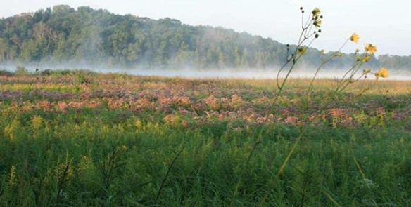 Tour Wisconsin's John Muir Nature and History Route