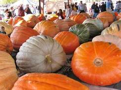 Image for 9 of Wisconsin's Top Fall Food Festivals
