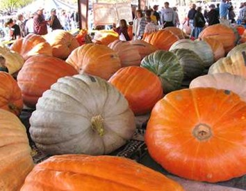 9 of Wisconsin's Top Fall Food Festivals