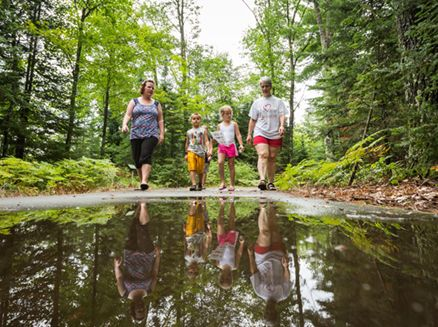 Image for Hiking Across Wisconsin: Top Forest Trails by Region