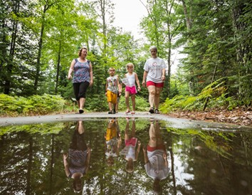 Hiking Across Wisconsin: Top Forest Trails by Region
