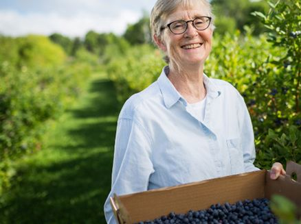 Image for 5 Great Summer Berry-Picking Spots in Wisconsin