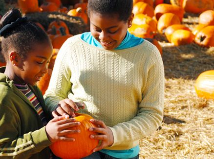 Image for 5 Wisconsin Family Farms for Fall Fun