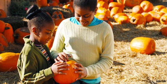 5 Wisconsin Family Farms for Fall Fun