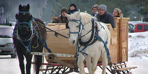 Events Offering Sleigh Rides Around Wisconsin