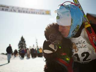 Skijoring in Wisconsin: 14 Dog-Friendly Winter Adventures