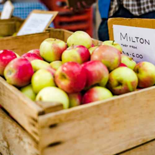 5 Great Wisconsin Apple Orchards to Visit This Fall