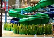 Family Fun-Cation Destinations: Indoor Water Parks