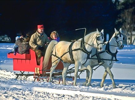 Image for Make the Season Bright with a Wisconsin Sleigh Ride