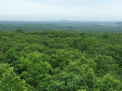 Image for Scenic Natural Wonders of the Kettle Moraine State Forest