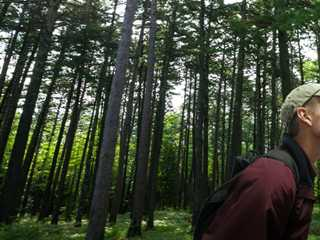 Take a Hike: Hidden Trails of Wisconsin