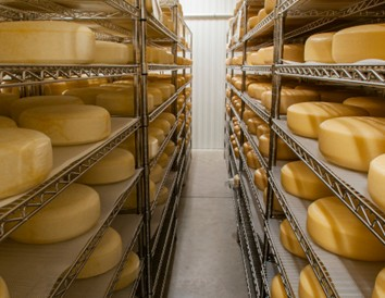 Heading to Door County? Stop at These 3 Amazing Cheese Destinations