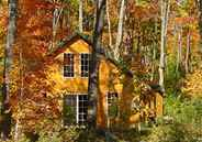 Five Quaint Cabins and Cottages for Fall