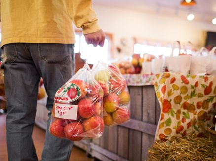 Image for Five Pick-Your-Own Wisconsin Apple Orchards Close to Chicago