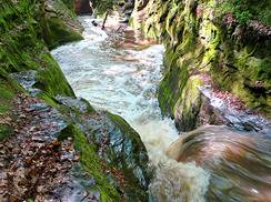 Image for Gorgeous Gorges: 3 Wisconsin Cool-Off Spots for Nature Lovers