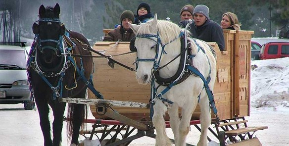 Six Wisconsin Spots for Horse-Drawn Sleigh Rides
