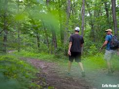 Image for Take a Hike: Six Easy Family Treks in Wisconsin