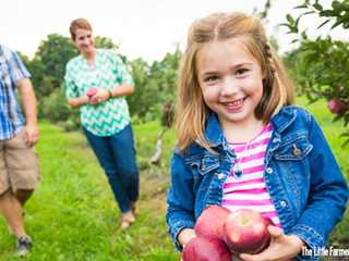 4 Wisconsin Apple Orchards for the Entire Family