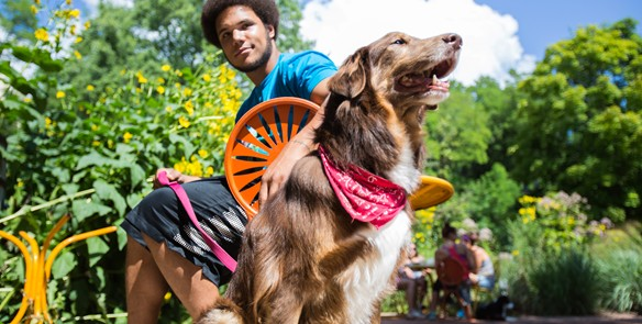 How to Plan A Dog-Friendly Trip to Milwaukee