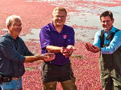 Image for Celebrating Wisconsin's Cranberries