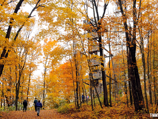 Know Before You Go: Fall Color in Wisconsin