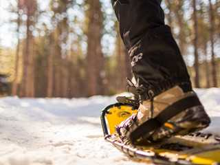 Great Places to Snowshoe in Wisconsin